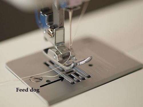 Feed dogs in sewing machine