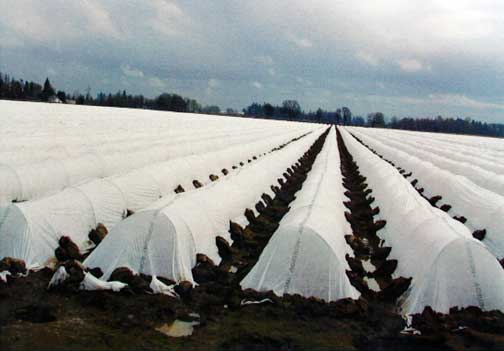 Cold and frost control net
