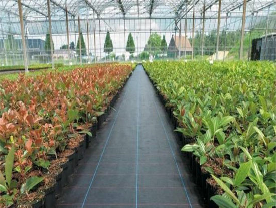 Ground Cover mat